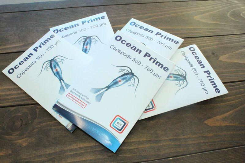 画像1: Ocean Prime  DVH フレッシュパックコペポーダ 500〜700ミクロン 50g